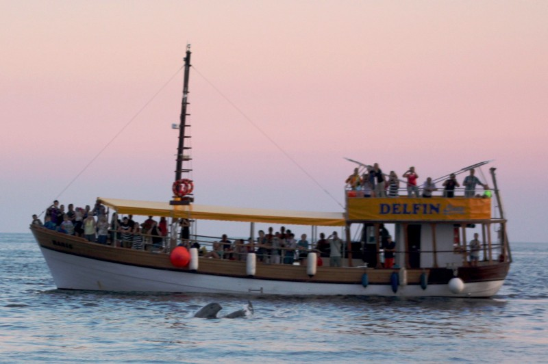 Boat excursions Rovinj